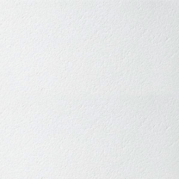 BIOGUARD Plain board 600x600x15